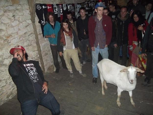 Grind-Goat-1